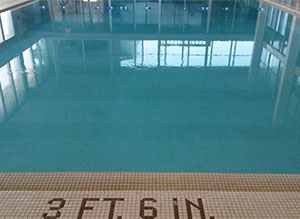 Mount Horeb swimming pool hotel